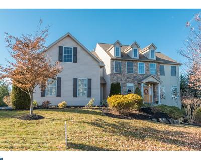 Sinking Spring Single Family Home ACTIVE: 1302 Stone Ridge Road
