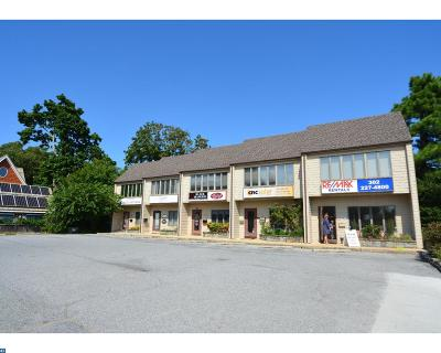 Rehoboth Beach Commercial ACTIVE: 323c Rehoboth Avenue #C