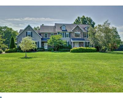 West Amwell NJ Single Family Home ACTIVE: $799,000