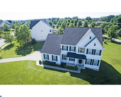 Coatesville Single Family Home ACTIVE: 133 Bridle Path Lane