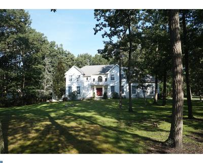 Southampton Single Family Home ACTIVE: 46 Constitution Drive