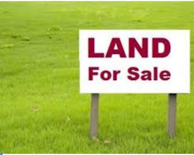 Bridgeville Residential Lots & Land ACTIVE: Lot 1 Blanchard Road