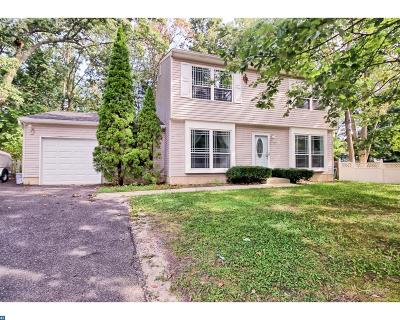 Gloucester Twp, Sicklerville Single Family Home ACTIVE: 7 Mont Blanc Court