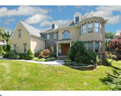 Penn Valley Single Family Home ACTIVE: 241 Stacey Road