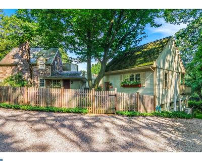 New Hope PA Single Family Home ACTIVE: $1,099,999
