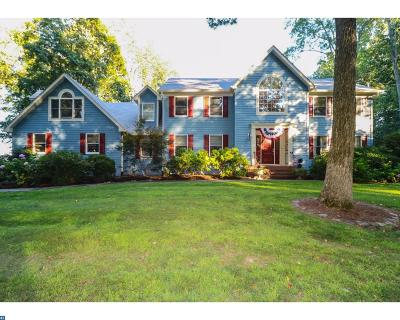Hopewell Single Family Home ACTIVE: 32 Harbourton Woodsville Road
