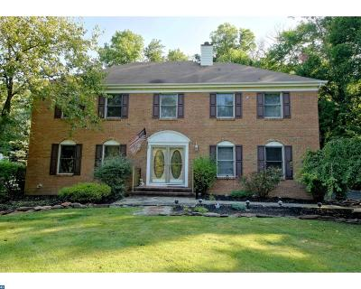 Hopewell Single Family Home ACTIVE: 46 New Road