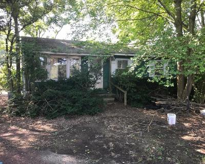 DE-Sussex County Single Family Home ACTIVE: 20627 John J Williams Highway