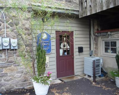 Doylestown PA Commercial ACTIVE: $1,600