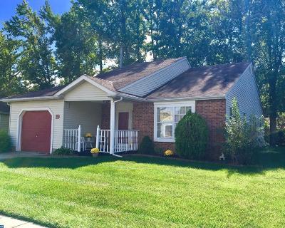 Woodbury Single Family Home ACTIVE: 19 Stewart Lane