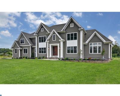 Hopewell Single Family Home ACTIVE: 4 Silvers Court
