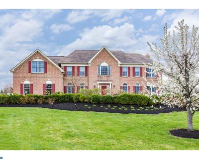 Princeton Single Family Home ACTIVE: 41 Morris Drive