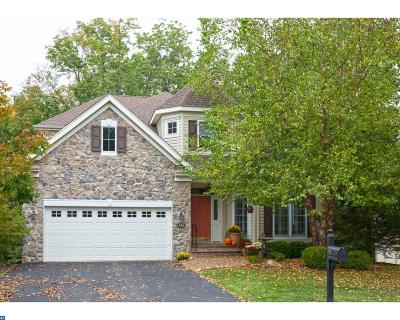 New Hope PA Single Family Home ACTIVE: $695,000
