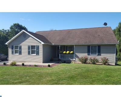 Pine Grove PA Single Family Home ACTIVE: $234,900