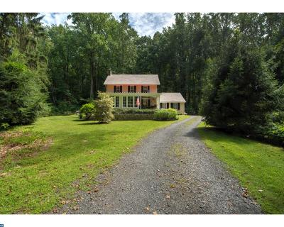 Buckingham Single Family Home ACTIVE: 4627 Upper Mountain Road