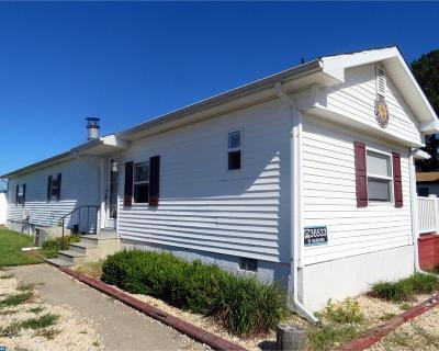 Millsboro Mobile Home ACTIVE: 36533 Pebble Drive