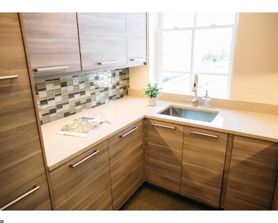 Philadelphia PA Condo/Townhouse ACTIVE: $275,000