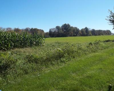 PA-Bucks County Residential Lots & Land ACTIVE: 491 Deep Run Road