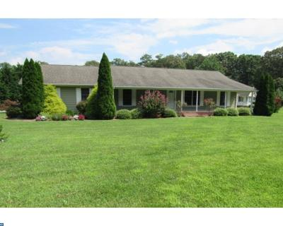 Georgetown Single Family Home ACTIVE: 22939 Peterkins Road