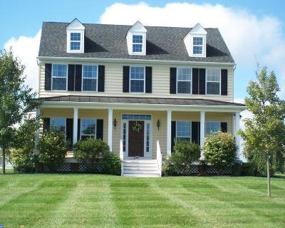 Coatesville Single Family Home ACTIVE: 804 Cotrel Lane