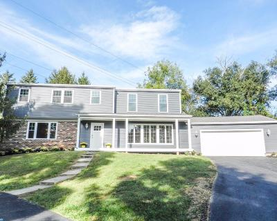 Coatesville Single Family Home ACTIVE: 365 Misty Patch Road