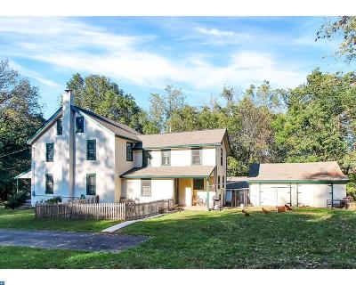 Birdsboro Single Family Home ACTIVE: 761 Haycreek Road