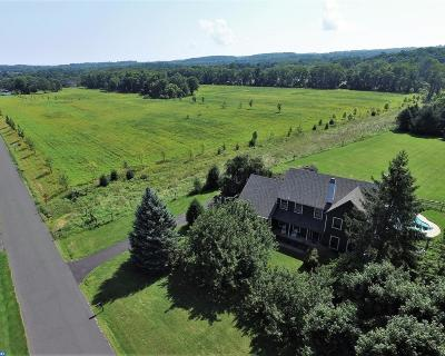 Carversville PA Single Family Home ACTIVE: $680,000