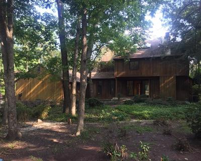 Medford Lakes Single Family Home ACTIVE: 4 Sandpiper Court