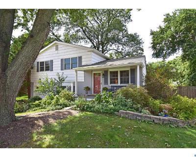 Hockessin Single Family Home ACTIVE: 535 Hemingway Drive