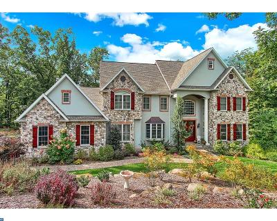 Mohnton PA Single Family Home ACTIVE: $798,000