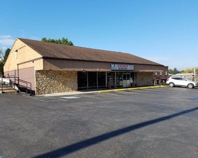 Phoenixville Commercial ACTIVE: 468 Nutt Road