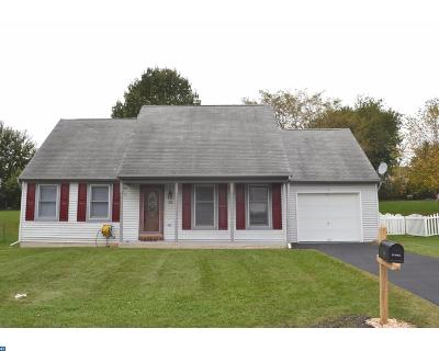 Reinholds PA Single Family Home ACTIVE: $209,000