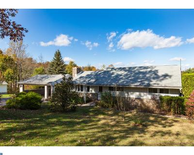 Mohnton Single Family Home ACTIVE: 37 Green Hills Road