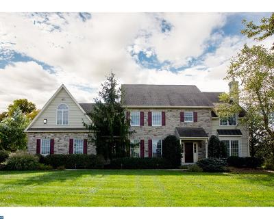 Doylestown Single Family Home ACTIVE: 4724 Point Pleasant Pike