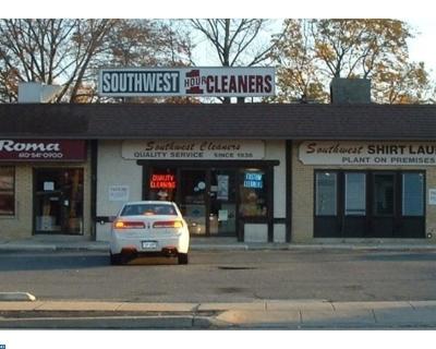 Springfield Commercial ACTIVE: 13 E Woodland Avenue