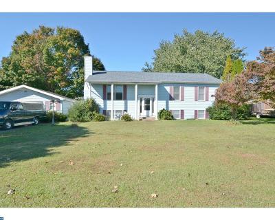 Smyrna Single Family Home ACTIVE: 408 Sunnyside Road