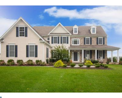Downingtown Single Family Home ACTIVE: 241 Patriot Lane