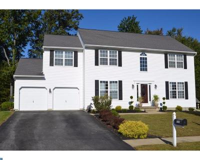 New Castle Single Family Home ACTIVE: 1225 Canvasback Drive