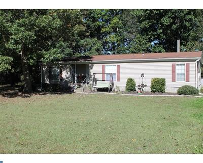 Milford Single Family Home ACTIVE: 109 Handy Drive