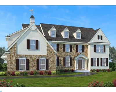 Avondale, Coatesville, Downingtown, Exton, Honey Brook, Malvern, Oxford, Parkesburg, Phoenixville, Radnor, Spring City, West Chester, West Grove Single Family Home ACTIVE: Lot 11 New Whitehorse Wy