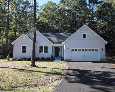 Millsboro Single Family Home ACTIVE: 25765 Deauville Place