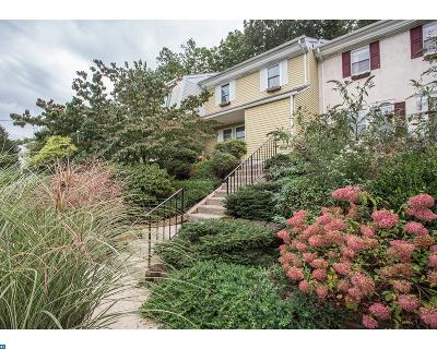 Doylestown PA Condo/Townhouse ACTIVE: $259,900