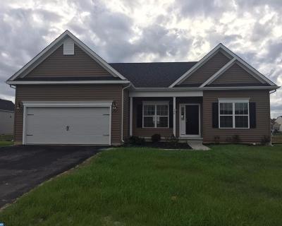 Smyrna Single Family Home ACTIVE: 156 Buckeye Lane #ASH