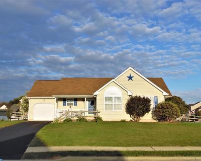 Smyrna Single Family Home ACTIVE: 28 Ramunno Drive