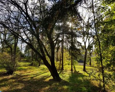 PA-Bucks County Residential Lots & Land ACTIVE: 6085 Upper Mountain Road