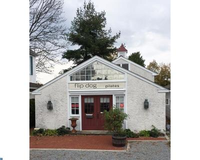 PA-Bucks County Commercial ACTIVE: 5806 Route 202 #STUDIO