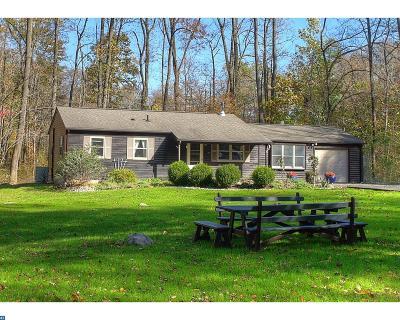 PA-Bucks County Single Family Home ACTIVE: 1228 Potters Lane