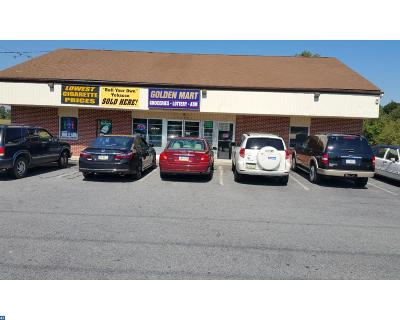 Coatesville Commercial ACTIVE: 1095 W Lincoln Highway