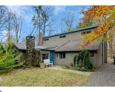Hopewell Single Family Home ACTIVE: 16 Mountain Church Road