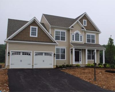Downingtown Single Family Home ACTIVE: 147way Patriot Lane